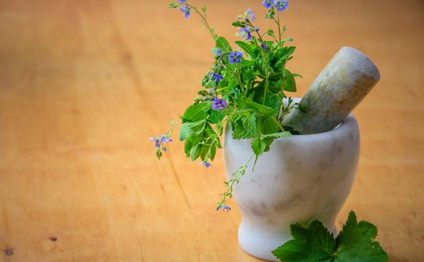 টবে ঔষধি গাছ 5-medicinal-indoor-plant